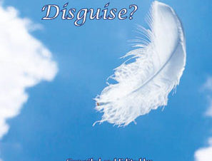 Angels-in-Disguise-Front-Cover-web